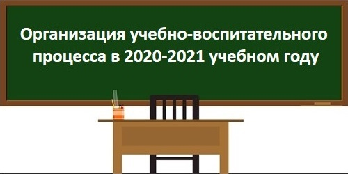 Организация образовательного процесса в новом учебном году